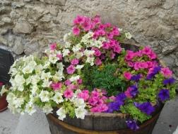 borgo-in-fiore-3